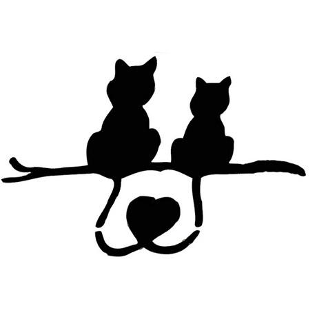 gatos-love